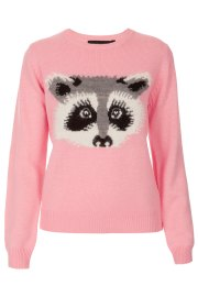 topshop racoon jumper was 40 now 25