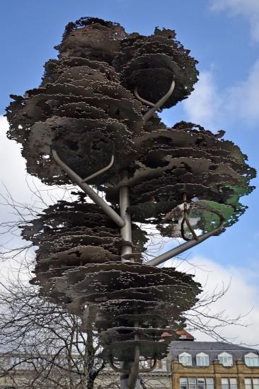 tree manc